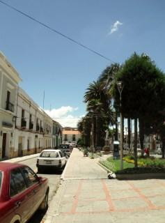 Sucre (40) (591x800)