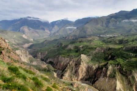 Arequipa,Colca,Peru (75) (800x533)
