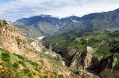 Arequipa,Colca,Peru (89) (800x533)