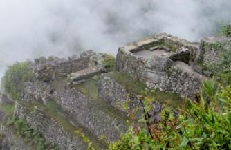 Machu Picchu, Peru (87) (800x533)