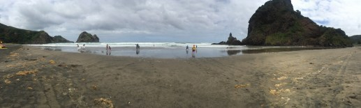 Piha Beach Panorama