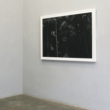 Valentina Torrado | Wald V, 2017