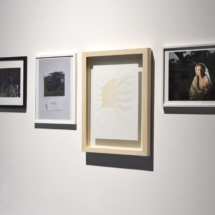 Editions (1/10), from left to right: Theresa Schubert, The forestal Psyche, 2017; Selket Chlupka, mind/set, 2016; Attilio Tono, OWP1, 2015, 1/7 unique drawings; Betty Böhm, Mother and Child #3, 2016