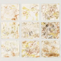 Carla Mercedes Hihn: Anavilhanas 2, 2017, Nature frottages on paper in artist's frame, 60 × 60 cm