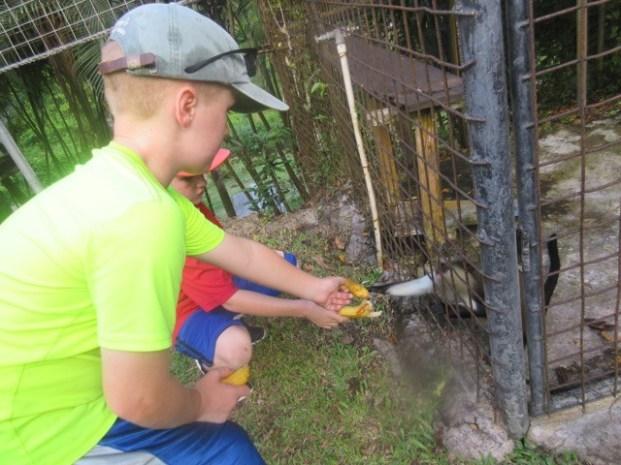 R&R Feeding the Monkeys