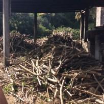 Wood for fireplace under distillery pot