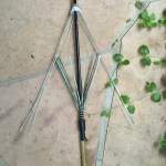 Stripped Umbrella