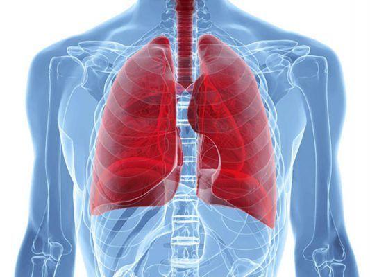 Piden cambiar medicamentos para tratamiento eficaz de tuberculosis