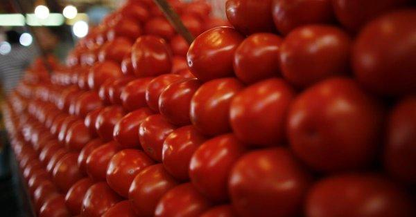 Inviable propuesta de inspeccionar camiones de tomate en la frontera