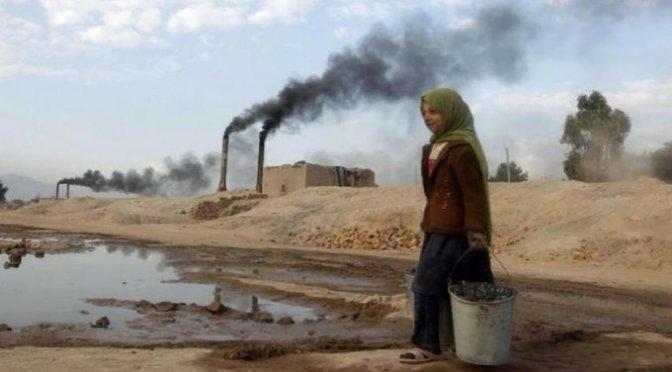 Cadenas de suministro enfrentan retos ambientales en el mundo
