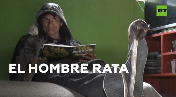 Conozcan al hombre que vive rodeado por decenas de ratas