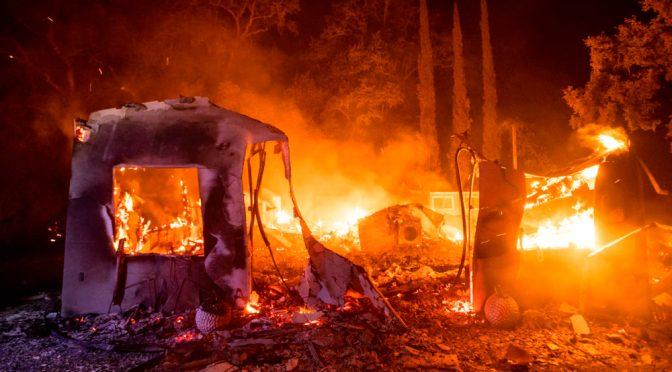 Aumentará la frecuencia y devastación de incendios forestales en el mundo