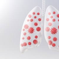 ¿Qué pasa en los pulmones durante el COVID-19?