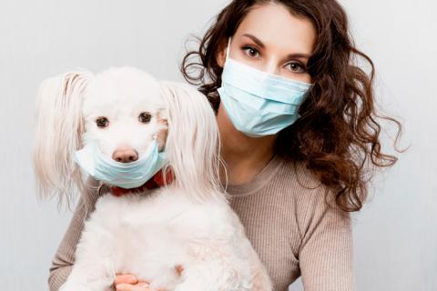 ¿Pueden los perros transmitir Covid-19 a los humanos?