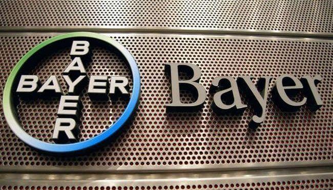 """Bayer critica el rechazo """"no científico"""" por parte de la Cofrepris del permiso de maíz transgénico"""