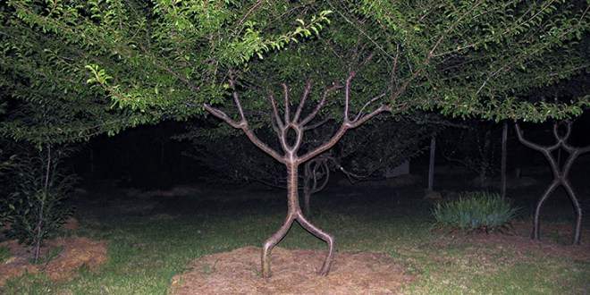 Person-tree