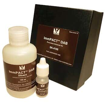 vector laboratories immpact dab