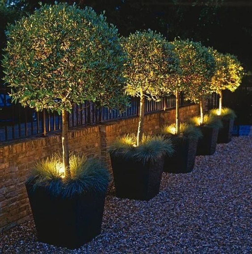 Inspiring Outdoor Lighting Ideas For Your Garden 15