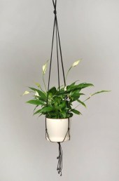 Stunning Small Planters Ideas To Maximize Your Interior Design 05