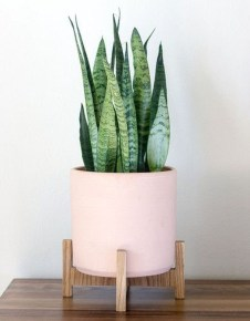 Stunning Small Planters Ideas To Maximize Your Interior Design 34
