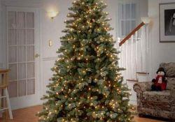Amazing Christmas Lights Tree Decoration Ideas 18