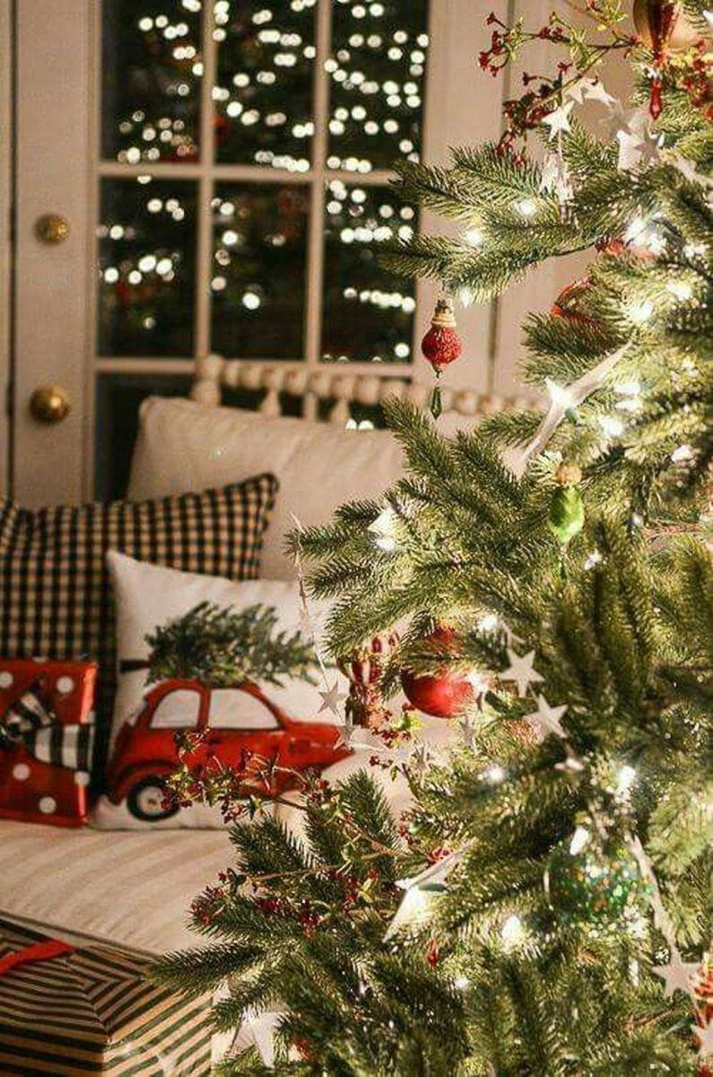 Amazing Christmas Lights Tree Decoration Ideas 33