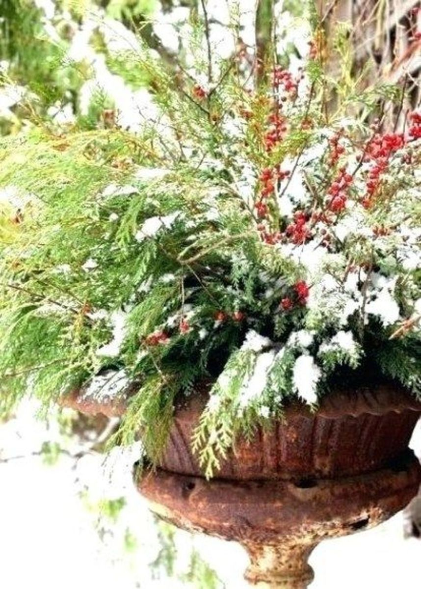 Perfect Outdoor Winter Planters Ideas 45