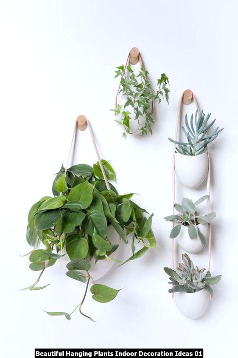Beautiful Hanging Plants Indoor Decoration Ideas 01