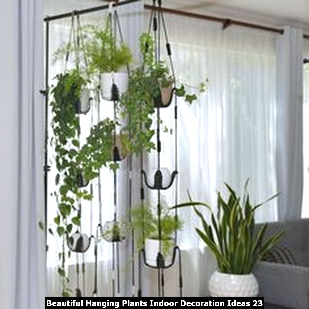 Beautiful Hanging Plants Indoor Decoration Ideas 23