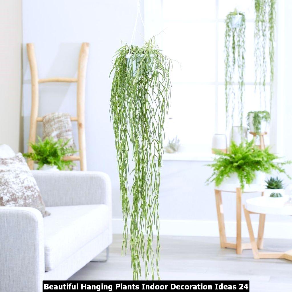 Beautiful Hanging Plants Indoor Decoration Ideas 24