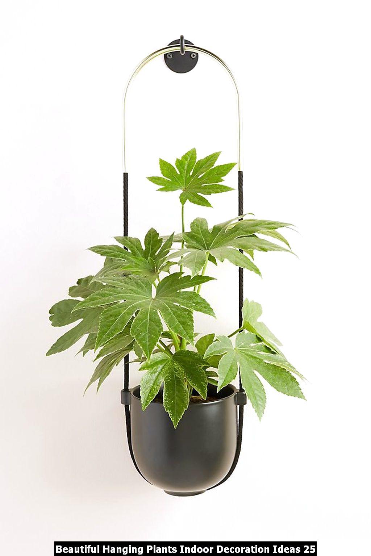 Beautiful Hanging Plants Indoor Decoration Ideas 25