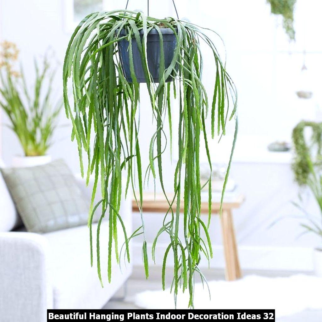 Beautiful Hanging Plants Indoor Decoration Ideas 32