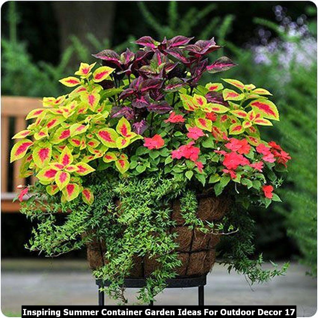 Inspiring Summer Container Garden Ideas For Outdoor Decor 17