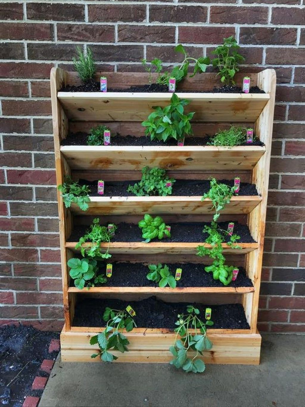 Popular Vertical Garden Wall For Outdoors Decor 13