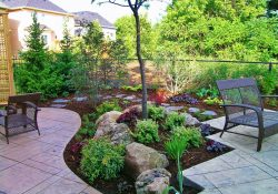 Backyard Ideas Without Grass