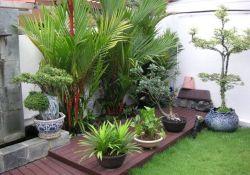 Small Garden Decoration Ideas