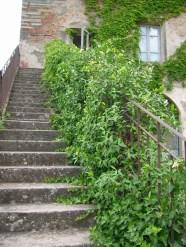 Memoria Narrante, la rampa di scale ascendente, foto personale ©