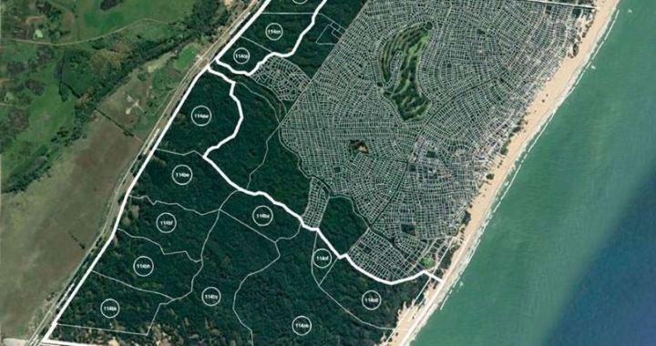 2000 millones de dolares, Carilo 2, asi es el nuevo loteo que quieren hacer en el paisaje protegido