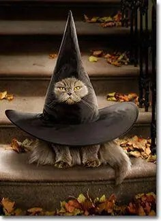 halloween 38 A blog for the love of Pinterest