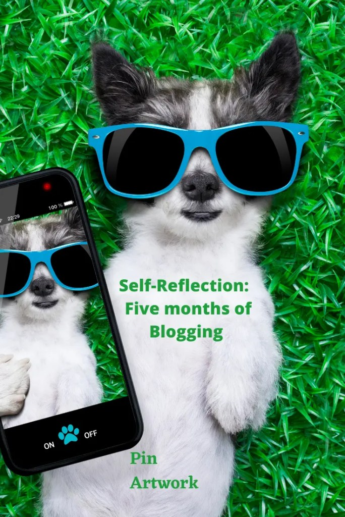 Self-Reflection:  Five Months of Blogging