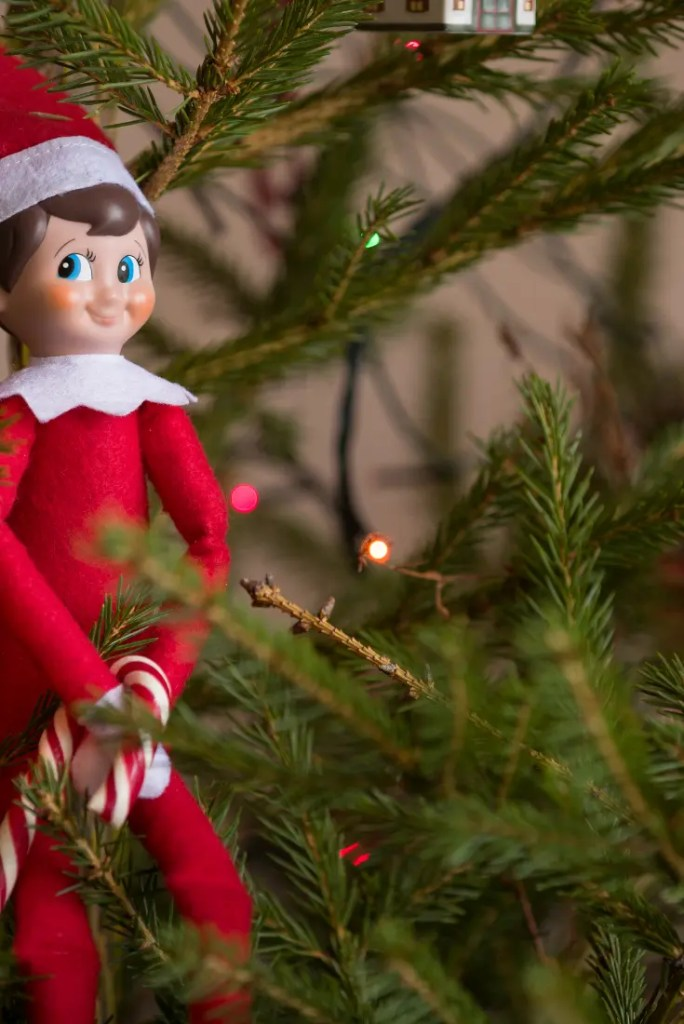 Elf on the Shelf ideas 2 A blog for the love of Pinterest