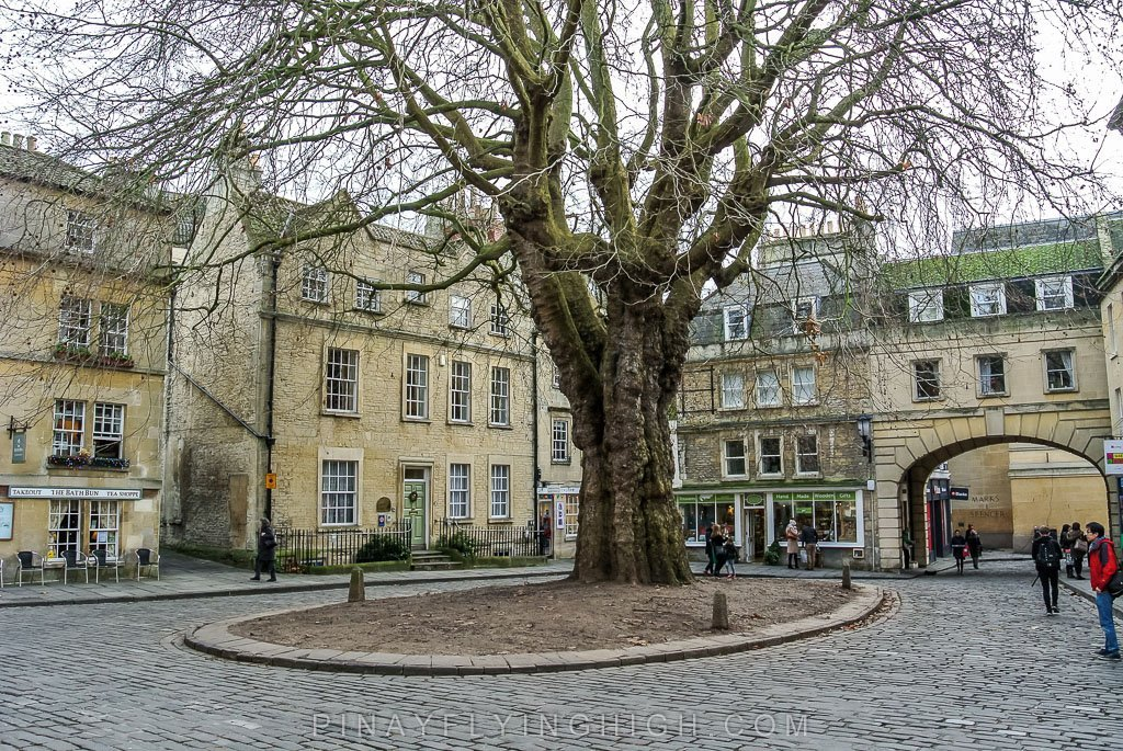 The Hanging Tree In Abbey Green, Bath, England   PinayFlyingHigh.com