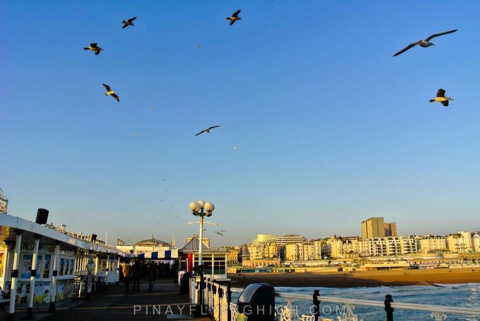 Brighton - PinayFlyingHigh.com-111