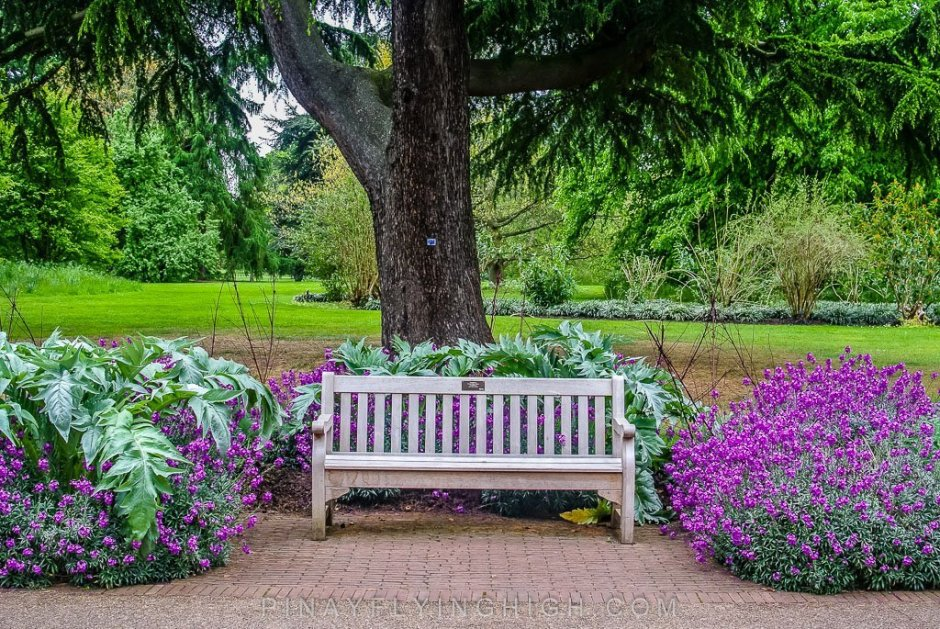 Kew Gardens - PinayFlyingHigh.com-513