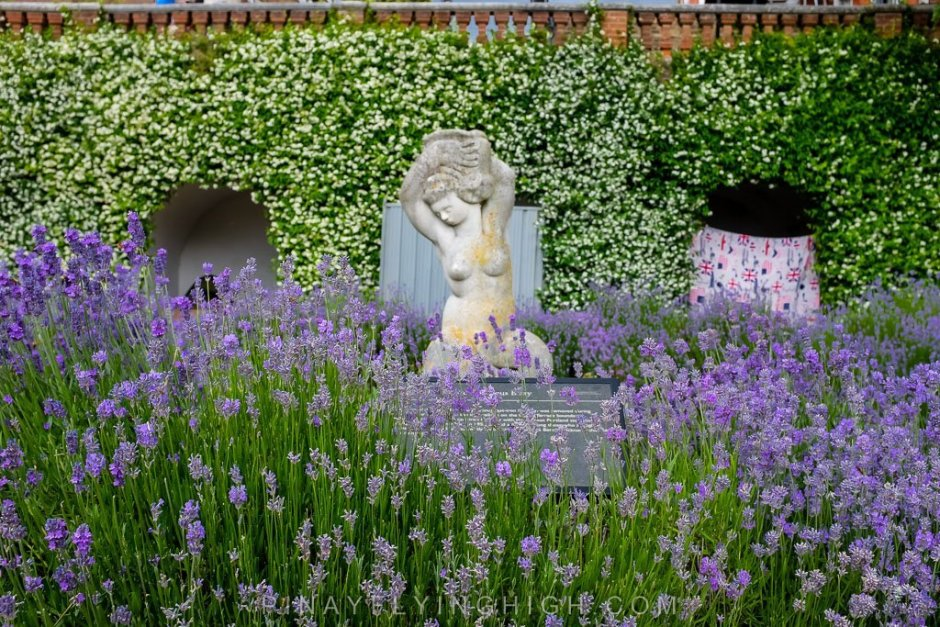 Terrace Gardens, Richmond, London, United Kingdom - pinayflyinghigh.com-103