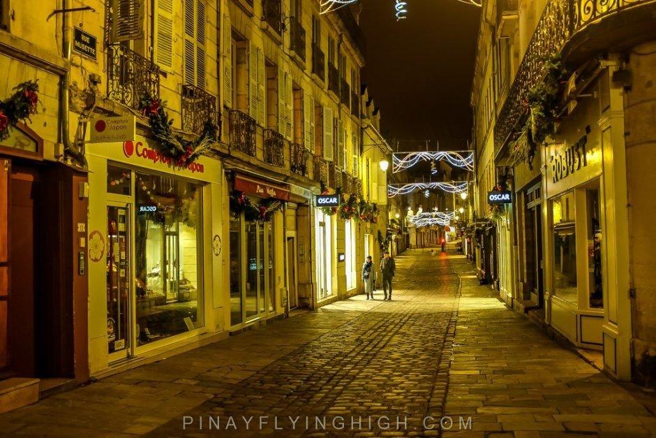 Dijon, France - PINAYFLYINGHIGH.COM-102