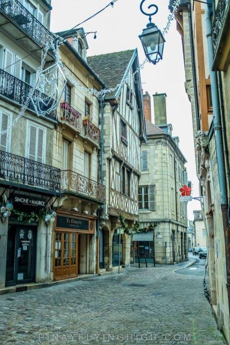 Dijon, France - PINAYFLYINGHIGH.COM-132