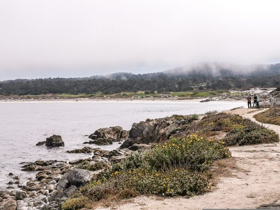17-mile drive, California