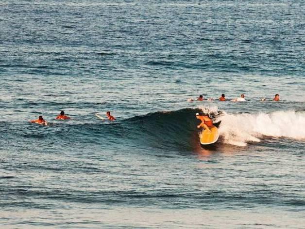 dedon surf