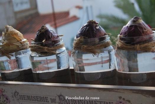 narcisos-bulbos-caja-decoupage-20